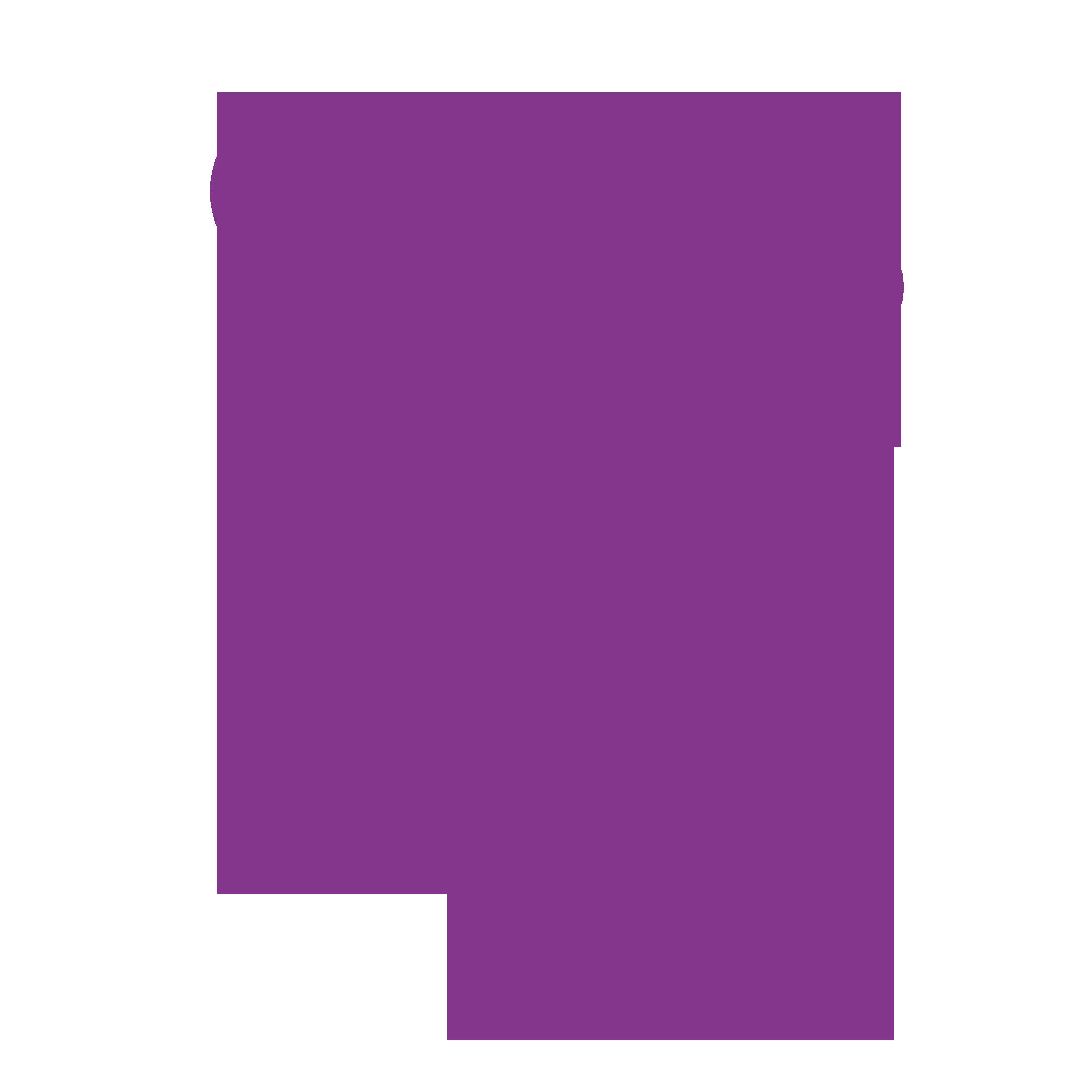 Body Combat Icon