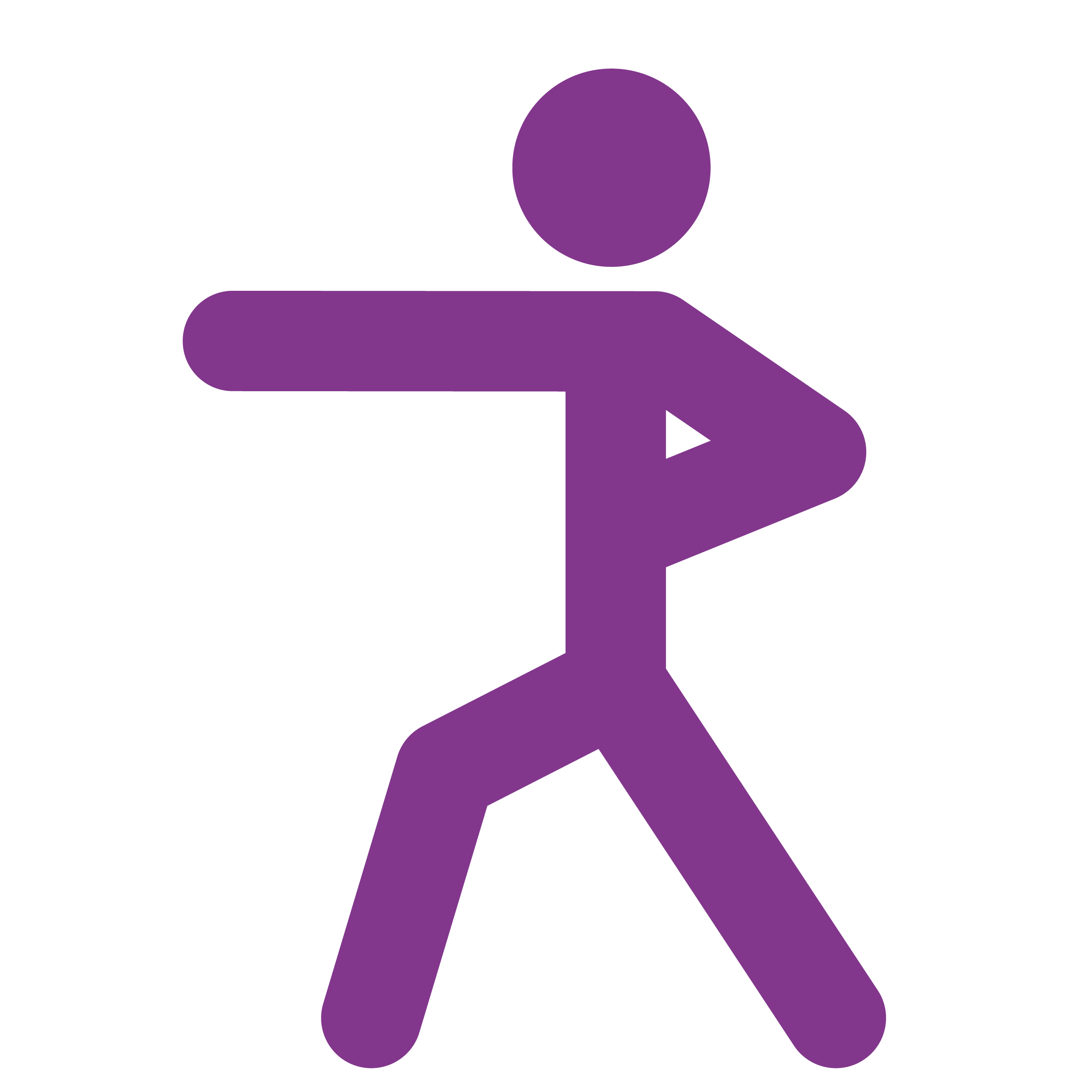 Cardio Combat Icon